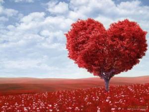 Энергия любви