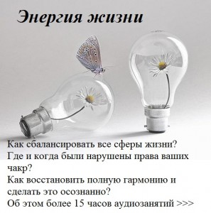 311411_458903674161662_470468552_n