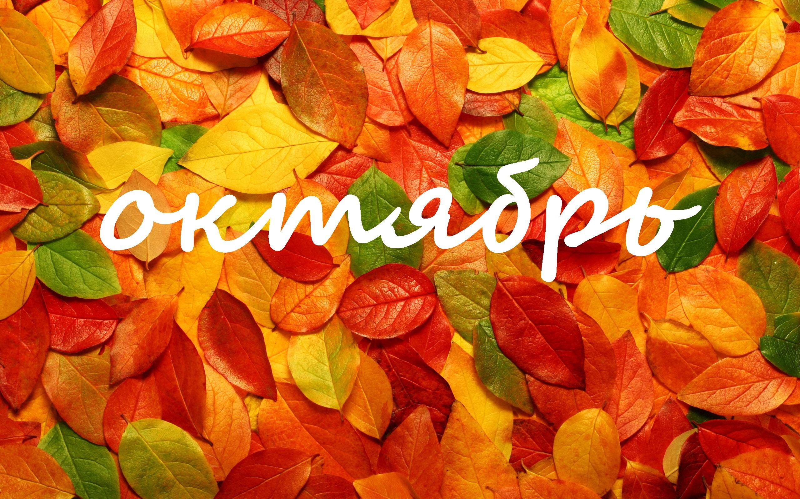 Сильная и мощная энергия октября.