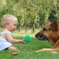 pets_kids_01